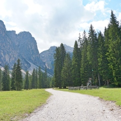 The way to the track to Postmeister Alm