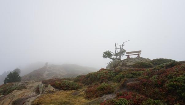 Misty mountain view