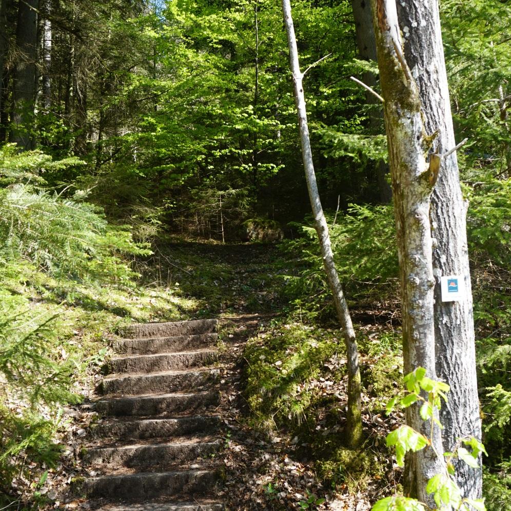 Steps ...