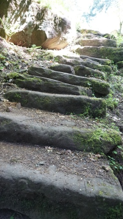even more steps